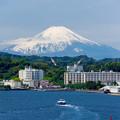 Photos: 富士へ臨む