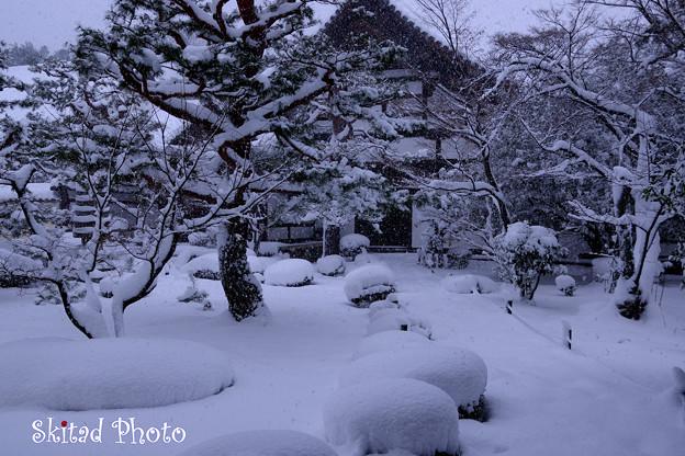 鹿王院の冬