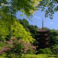 真夏の瑠璃光寺
