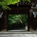 Photos: 誘いの門