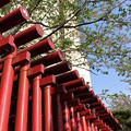Photos: 青空に映える鳥居