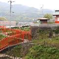 朱色の鳥居(臼杵城公園)