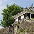 櫓門2(臼杵城公園)