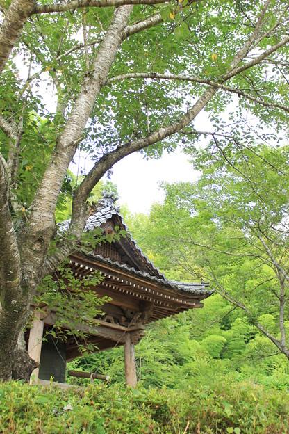 緑に囲まれた鐘つき堂