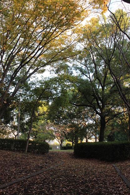 小さな公園で