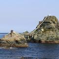 Photos: 姉妹岩2