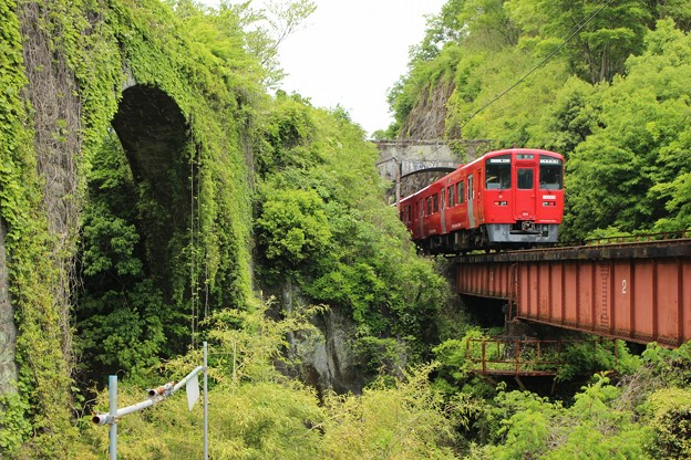 Photos: 石橋と列車2