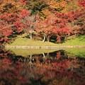 Photos: 用作公園1