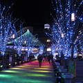 Photos: 光のファンタジー3