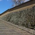 Photos: 大原邸の石垣