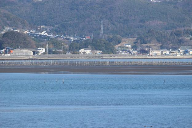 Photos: 守江湾