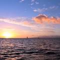 Photos: Blue Hawaii