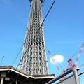 Photos: とうきょうスカイツリー駅へ