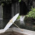 Photos: 滝の流れる中庭