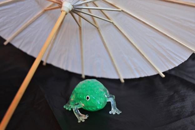 Photos: 雨宿り