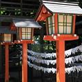 Photos: おみくじ結び処