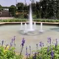 Photos: 公園の噴水