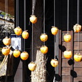 Photos: 吊し柿