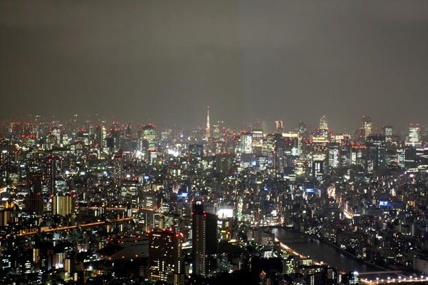 東京タワーを臨む