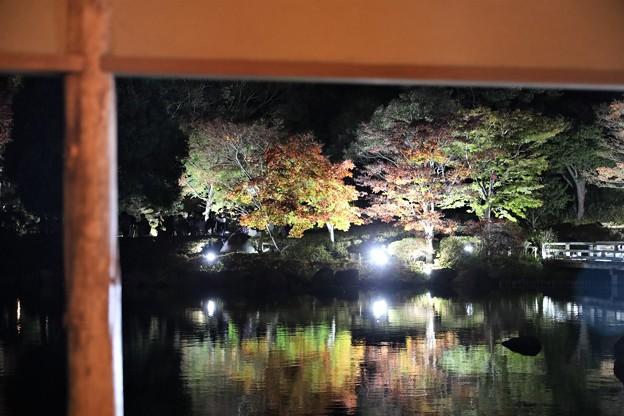 Photos: 四阿越しのライトアップ
