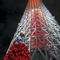 Photos: 紅紅ツリー