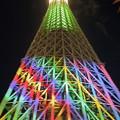 Photos: 634mのXmasツリー