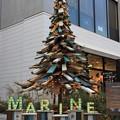 Photos: 廃材を組合せたツリー