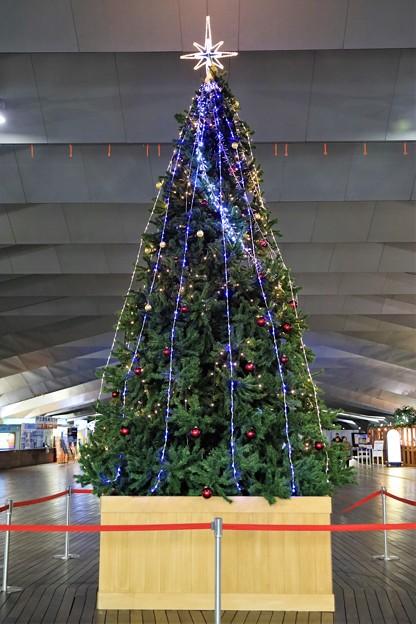 Photos: 大桟橋ターミナル