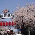 Photos: 平成の柴又