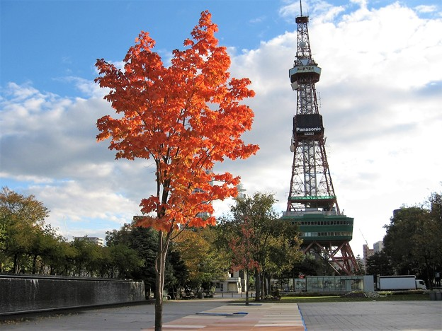 Photos: 札幌の秋