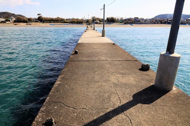 Photos: 早春の渚