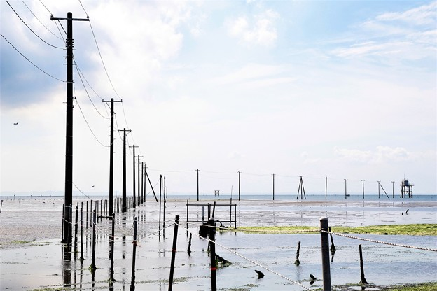 Photos: 海に電柱