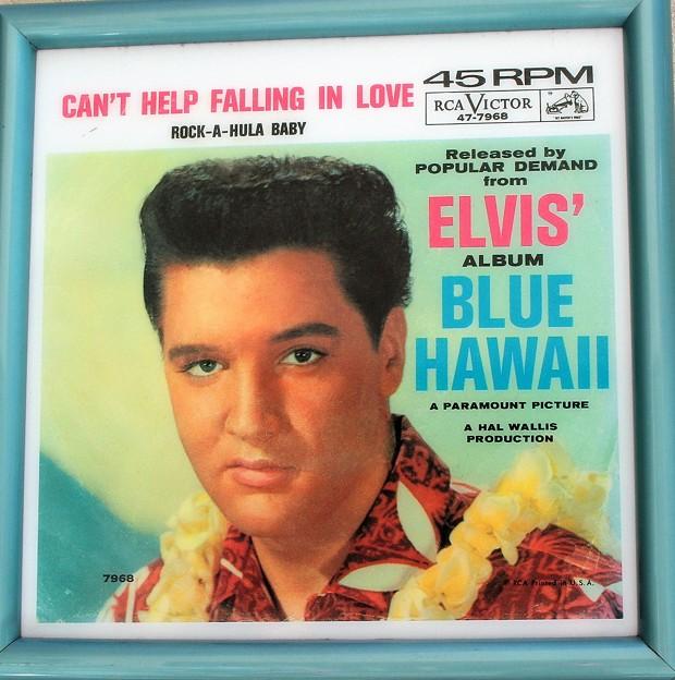 Photos: Dreams come true in Blue Hawaii