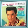 Dreams come true in Blue Hawaii