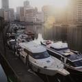 Photos: 芝浦