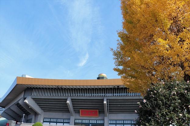 冬の武道館