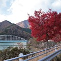 Photos: 丹沢湖
