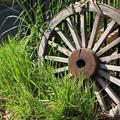 Photos: 車輪