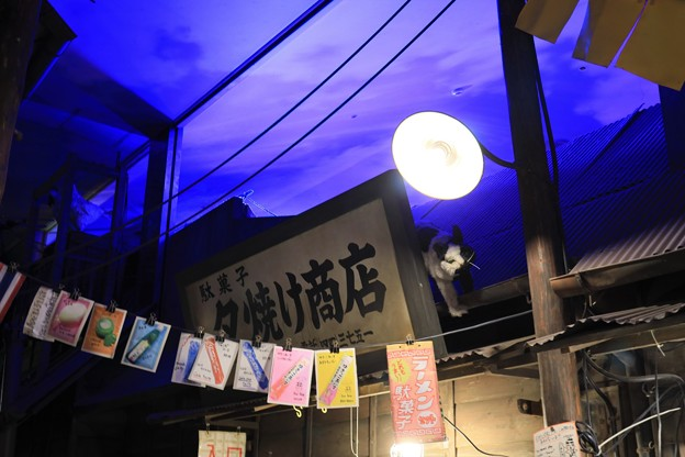 Photos: 夕やけ商店