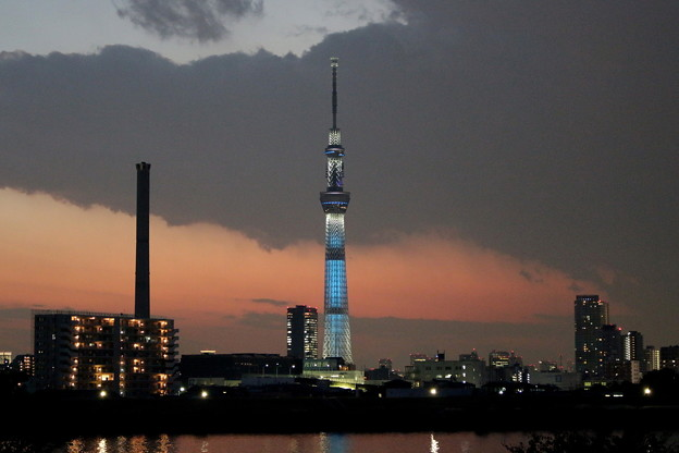 Photos: 荒川土手