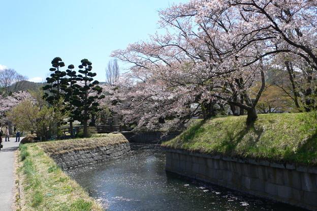 Photos: 龍岡城