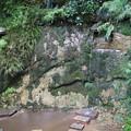 Photos: 不動の滝