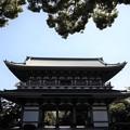 Photos: 三門