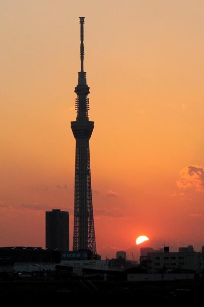 Photos: 晩秋の夕暮れ