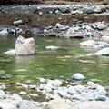 Photos: 河面