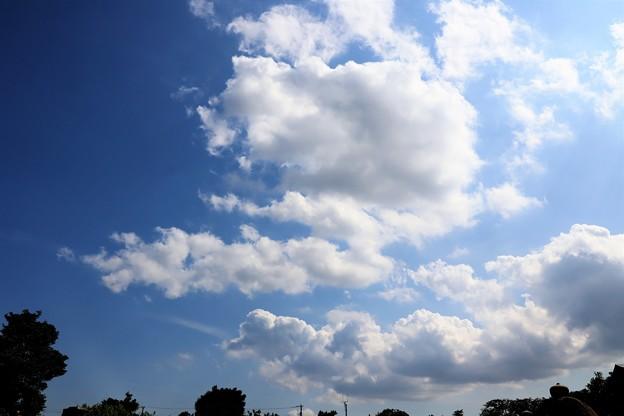 Photos: 梅雨明け間近
