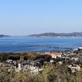 Photos: 館山