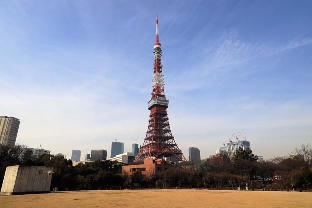 Photos: 東京のシンボル