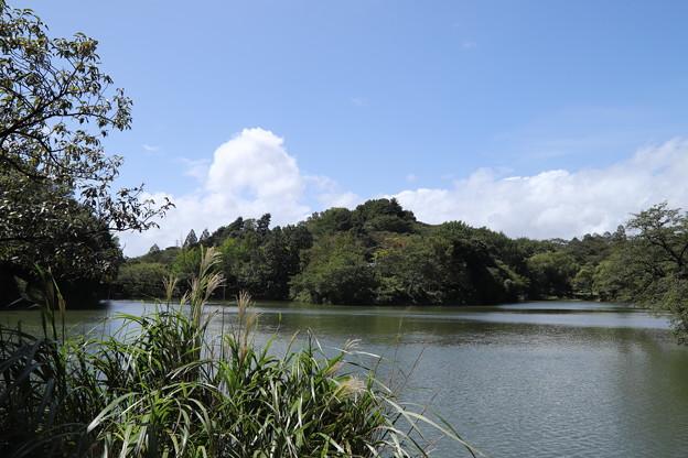 三ツ池公園
