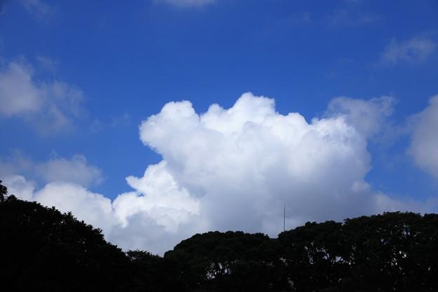 おまたせ夏雲